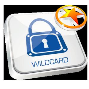 ssl_wildcard